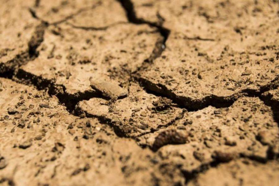 Australian Councils Piling On Climate Emergency Bandwagon