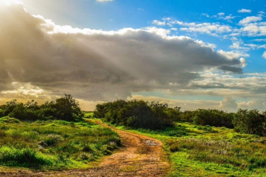 Cyprus seeks land for solar parks