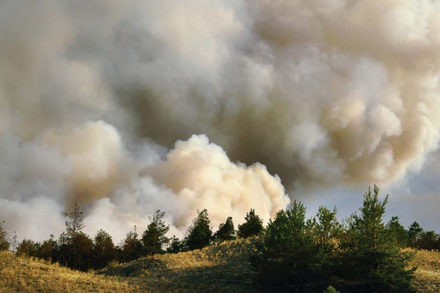 How bushfire smoke is altering the efficiency of solar panels