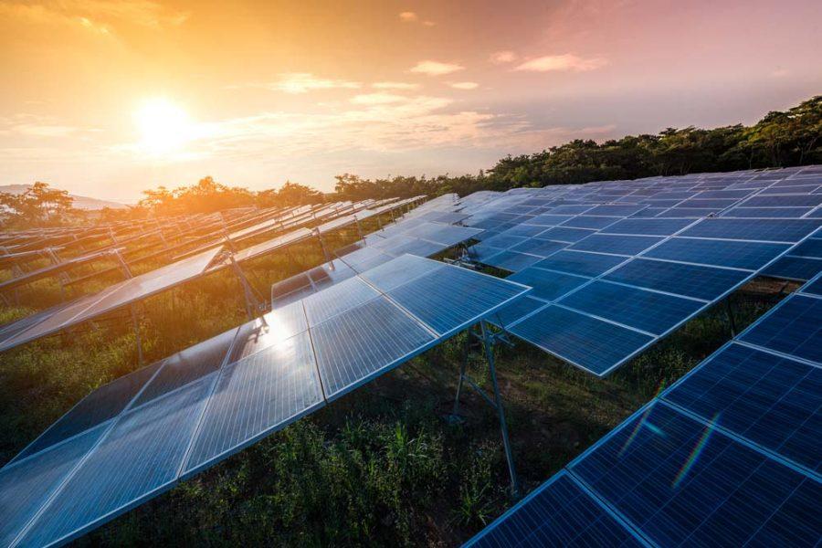 Maryvale solar farm gets the green light