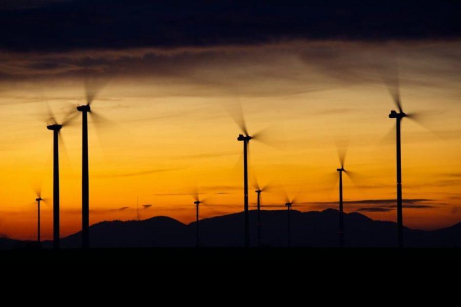Portuguese fossil fuel giant creates renewables unit