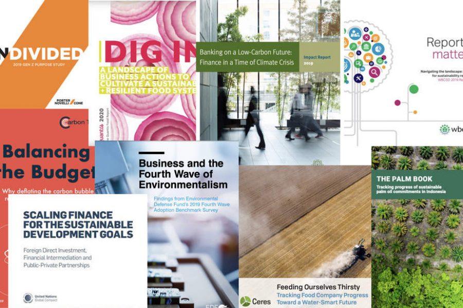 Report Report: Carbon bubble, resilient ag, water-smart future, SDG finance