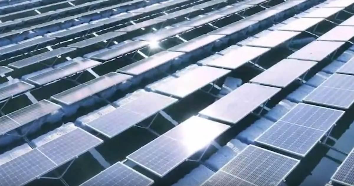 Floating solar - Longi panels