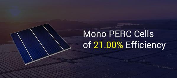 solar mono perc cells